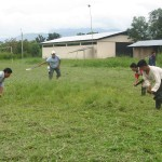 Shuar men clearing a field. Researchers from ICDS (Larry Sugiyama, Josh Snodgrass, Felicia Madimenos, and Melissa Liebert) have found that men with pregnant or lactating wives increase their activity levels, likely in order to compensate for their partners' elevated reproductive costs
